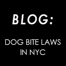 Dog Bite Laws in New York